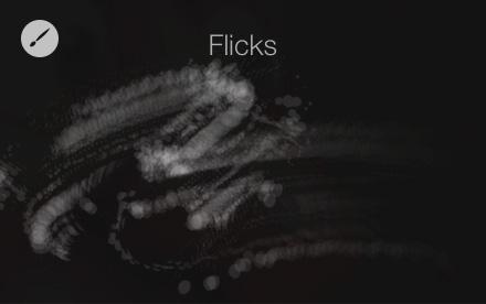 Flicks brush